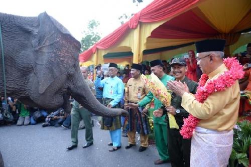 Gubernur Riau Canangkan Internet Masuk Desa