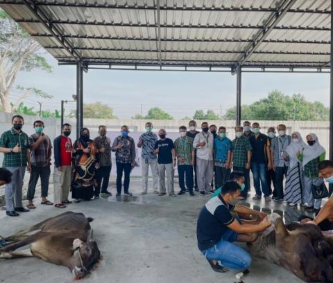 GoRiau Pemotongan hewan kurban di Peg