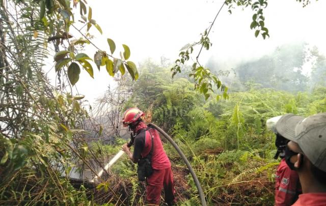 GoRiau RPK PT AA lakukan pemadaman di